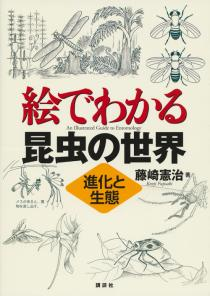 絵でわかる昆虫の世界 進化と生態